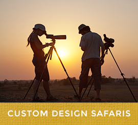 custom_design_safaris