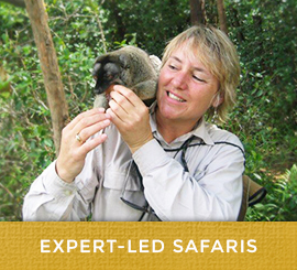 expert-led_safaris
