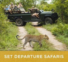 set_departure_safaris